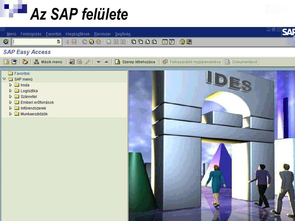 Az SAP felülete