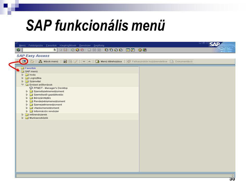 SAP funkcionális menü