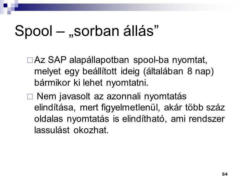 """Spool – """"sorban állás Az SAP alapállapotban spool-ba nyomtat, melyet egy beállított ideig (általában 8 nap) bármikor ki lehet nyomtatni."""