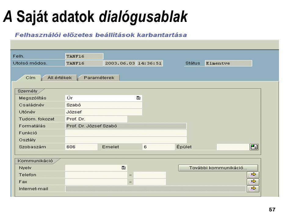 A Saját adatok dialógusablak