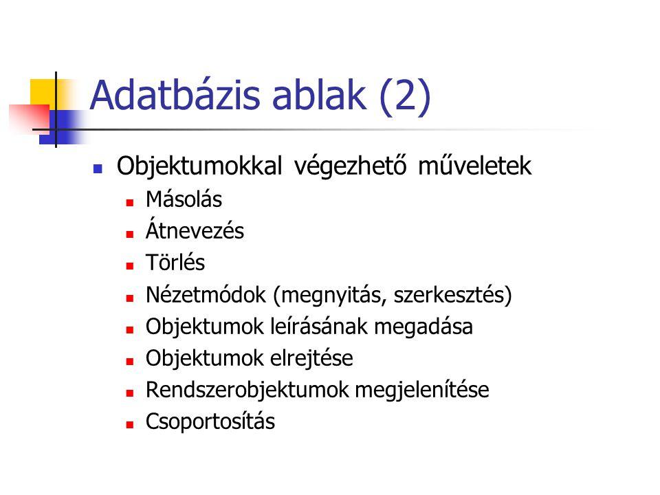 Adatbázis ablak (2) Objektumokkal végezhető műveletek Másolás