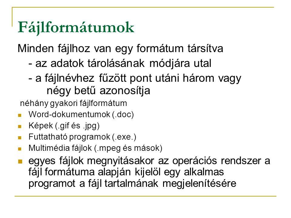 Fájlformátumok Minden fájlhoz van egy formátum társítva