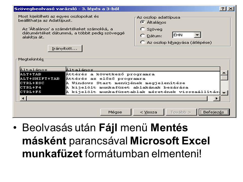 Beolvasás után Fájl menü Mentés másként parancsával Microsoft Excel munkafüzet formátumban elmenteni!