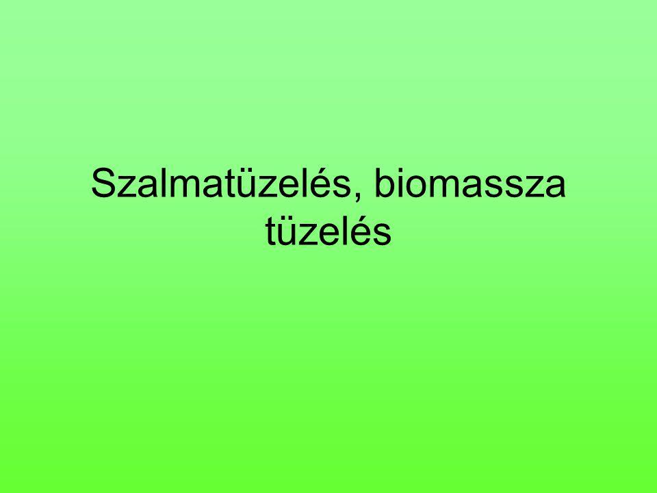 Szalmatüzelés, biomassza tüzelés