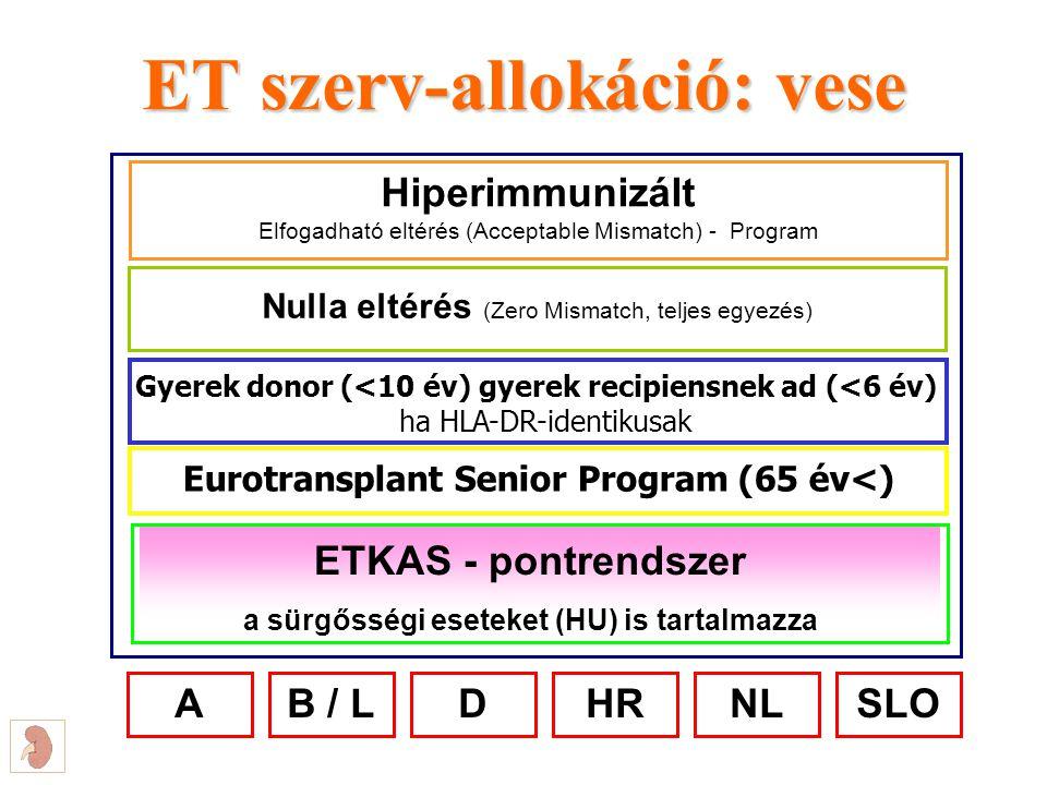 ET szerv-allokáció: vese