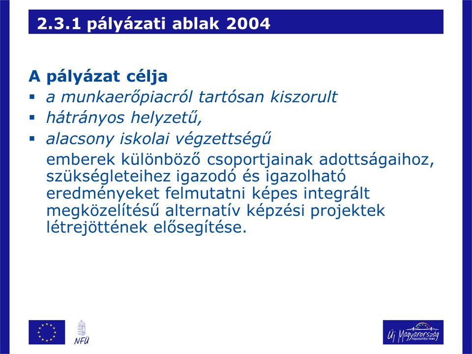 2.3.1 pályázati ablak 2004 A pályázat célja. a munkaerőpiacról tartósan kiszorult. hátrányos helyzetű,