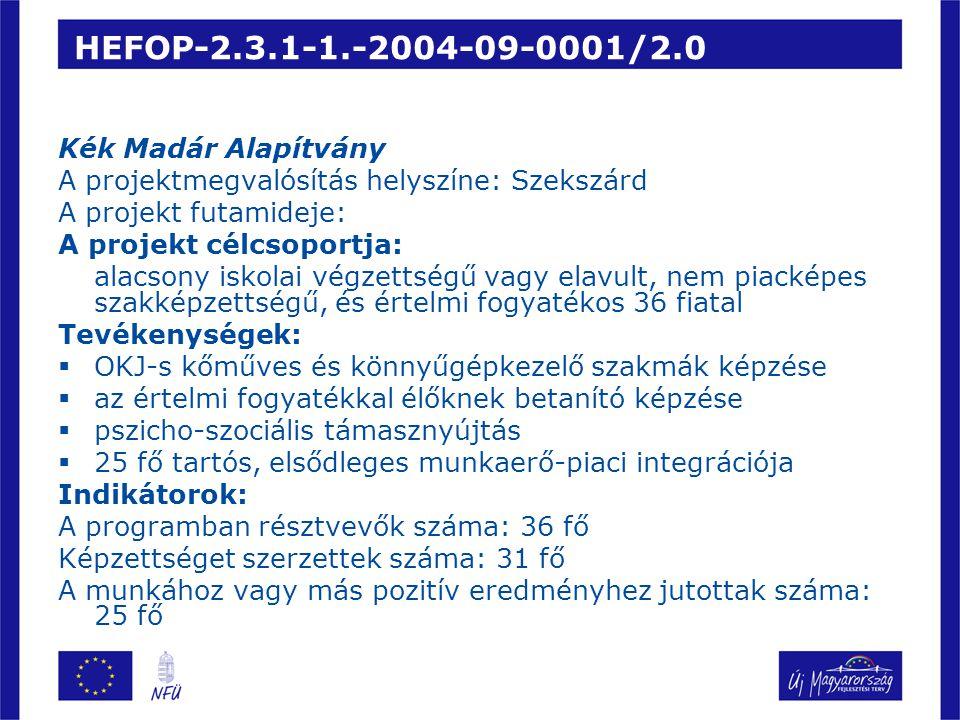 HEFOP-2.3.1-1.-2004-09-0001/2.0 Kék Madár Alapítvány