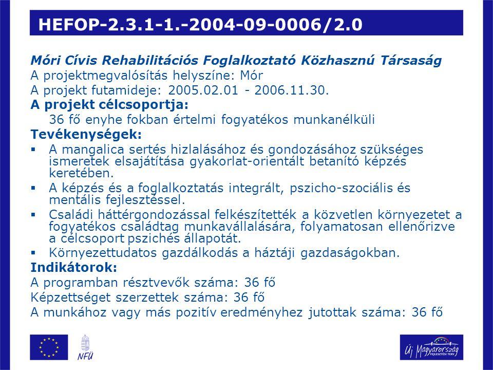 HEFOP-2.3.1-1.-2004-09-0006/2.0 Móri Cívis Rehabilitációs Foglalkoztató Közhasznú Társaság. A projektmegvalósítás helyszíne: Mór.