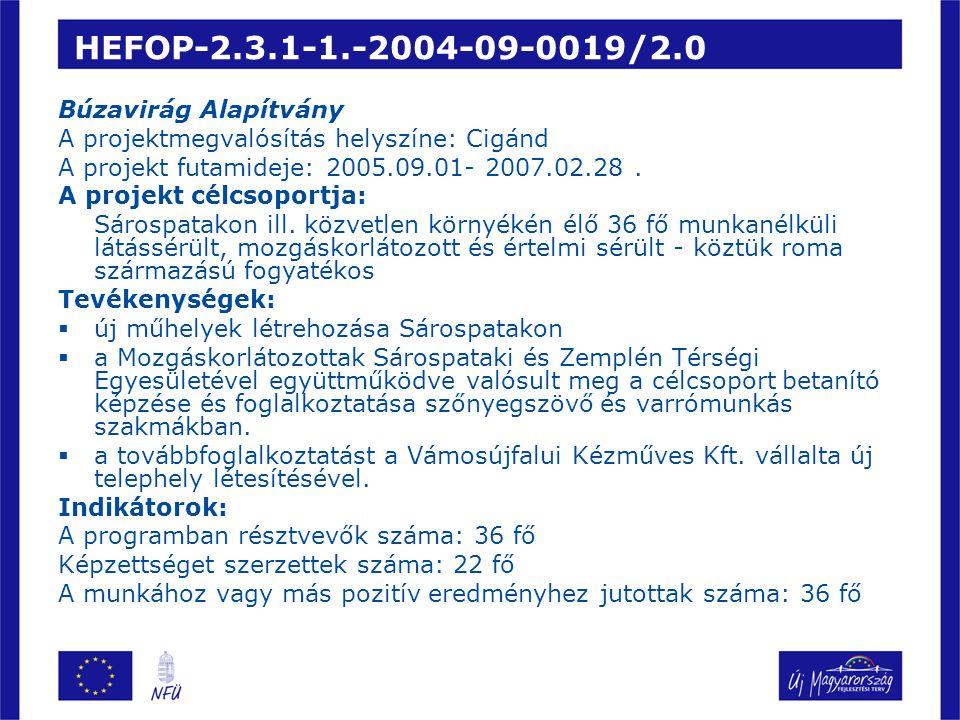 HEFOP-2.3.1-1.-2004-09-0019/2.0 Búzavirág Alapítvány