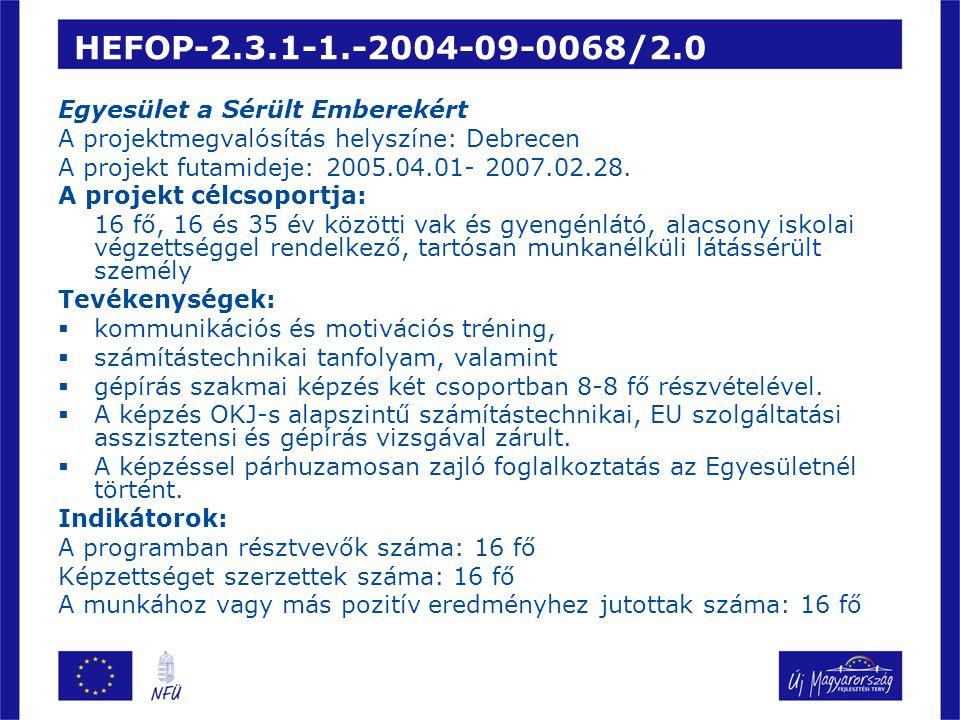 HEFOP-2.3.1-1.-2004-09-0068/2.0 Egyesület a Sérült Emberekért
