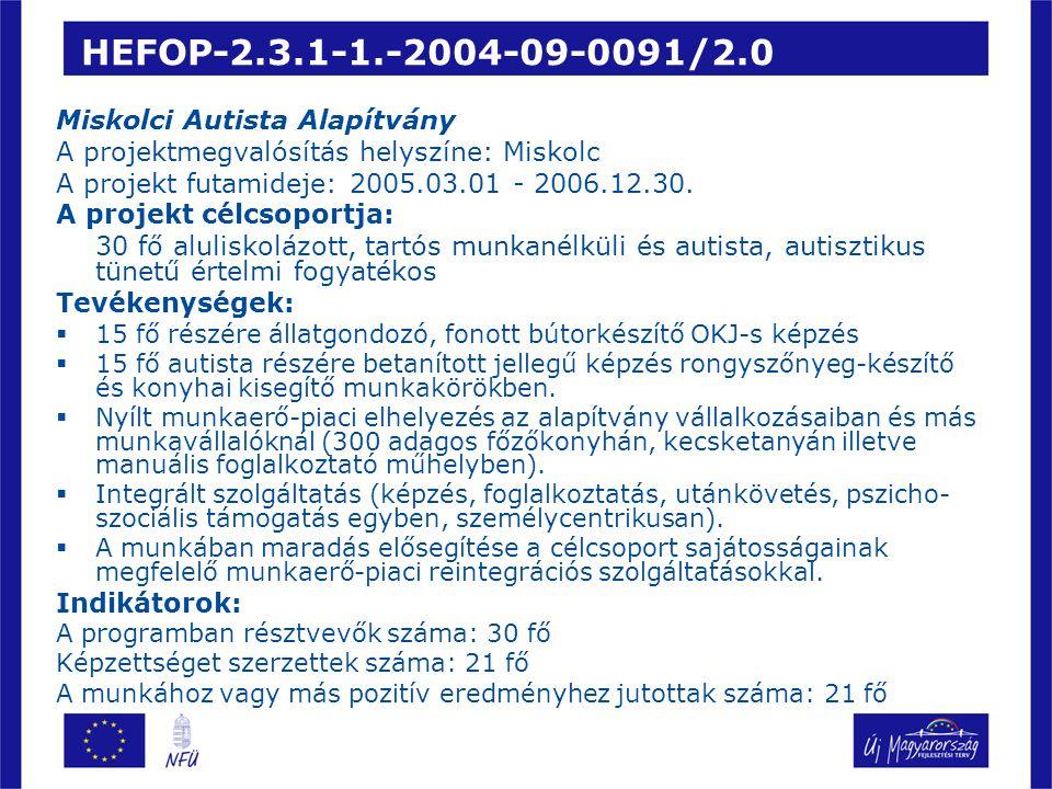 HEFOP-2.3.1-1.-2004-09-0091/2.0 Miskolci Autista Alapítvány