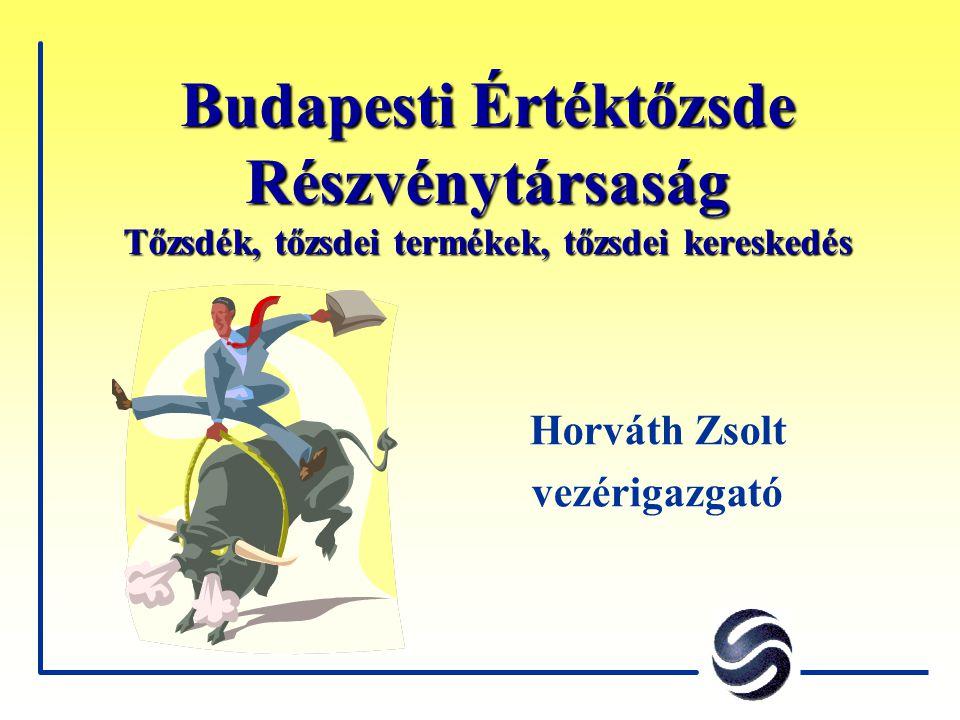 Horváth Zsolt vezérigazgató