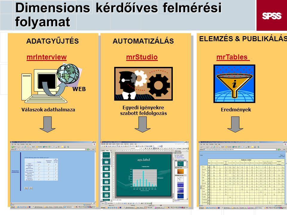Dimensions kérdőíves felmérési folyamat