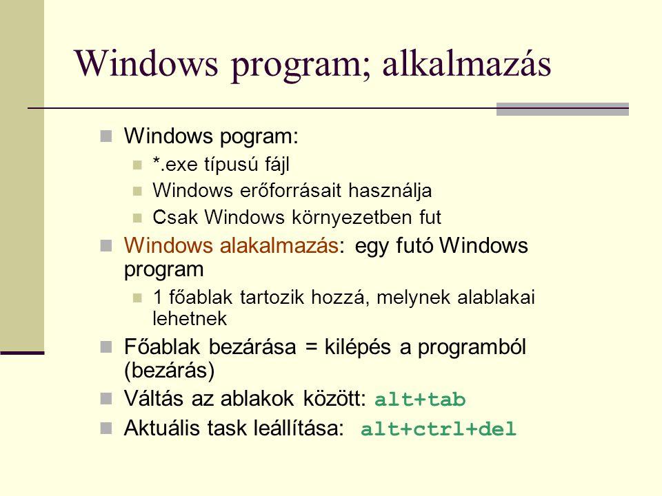 Windows program; alkalmazás
