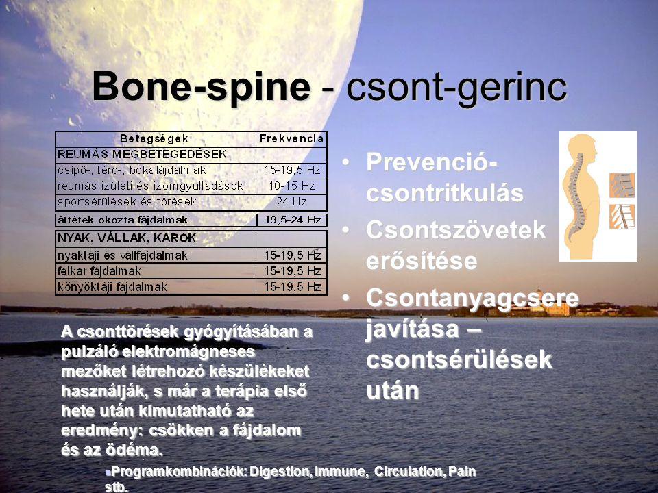 Bone-spine - csont-gerinc