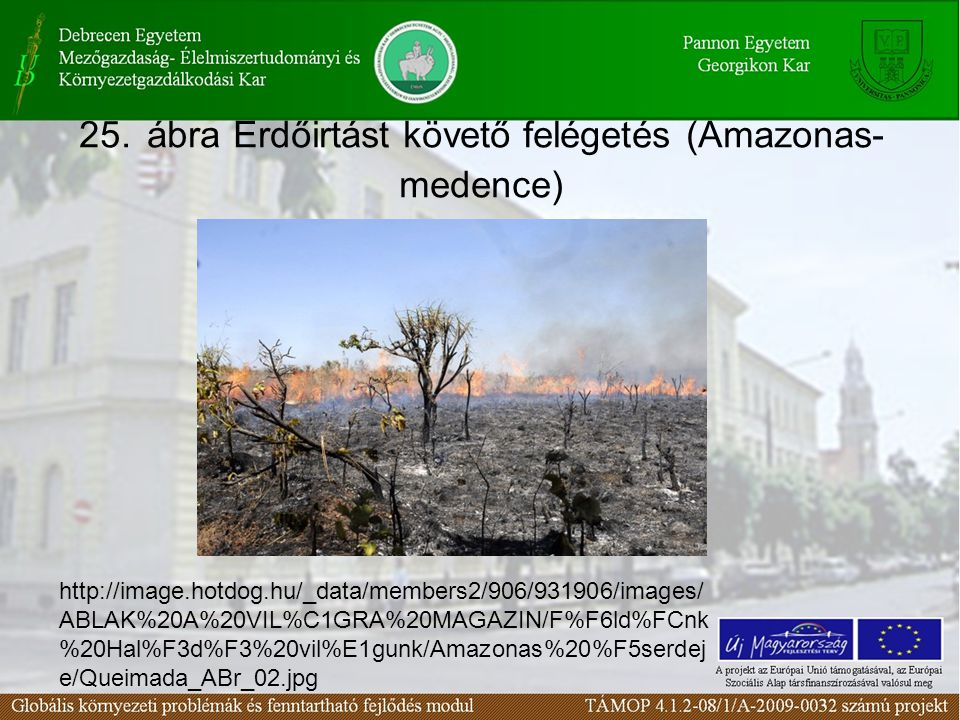 25. ábra Erdőirtást követő felégetés (Amazonas-medence)