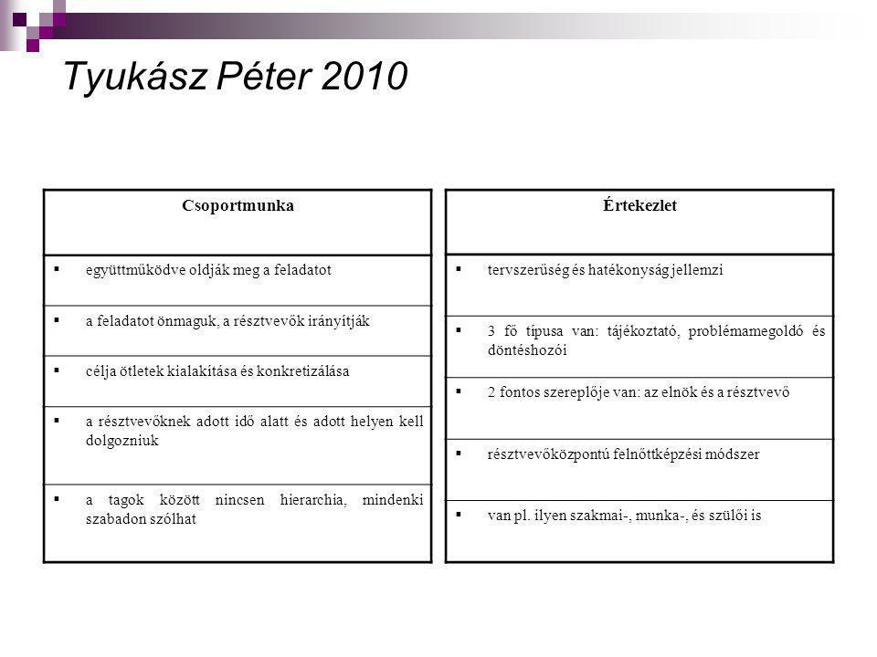 Tyukász Péter 2010 Csoportmunka Értekezlet