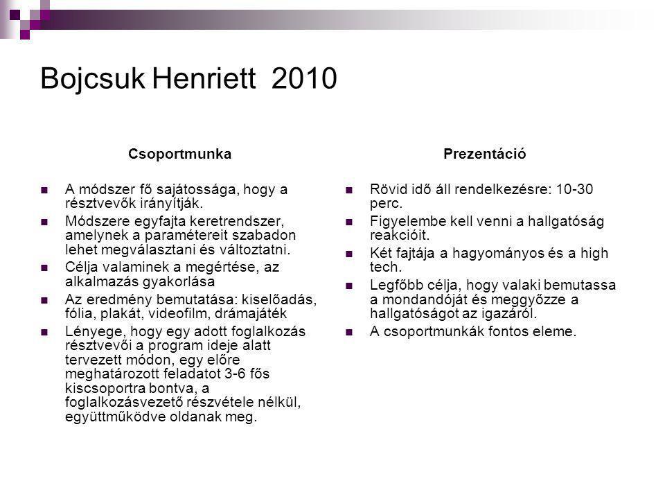 Bojcsuk Henriett 2010 Csoportmunka