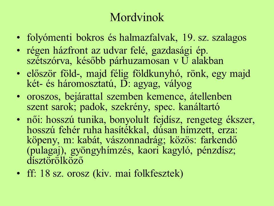 Mordvinok folyómenti bokros és halmazfalvak, 19. sz. szalagos