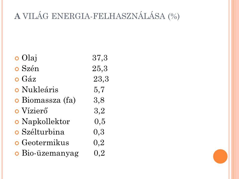 A VILÁG ENERGIA-FELHASZNÁLÁSA (%)