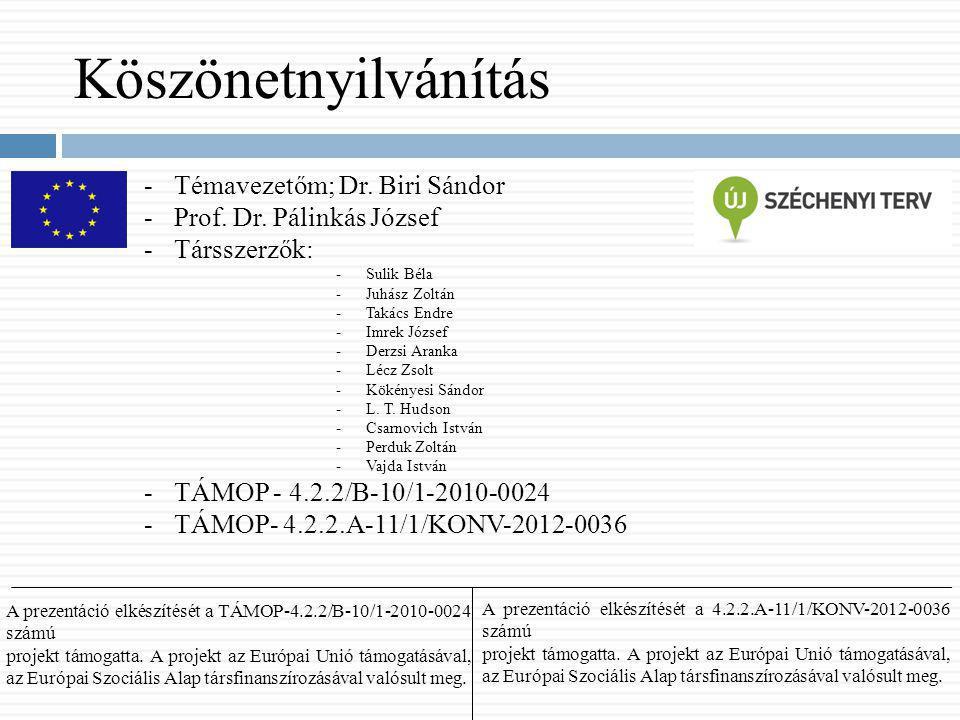 Köszönetnyilvánítás Témavezetőm; Dr. Biri Sándor