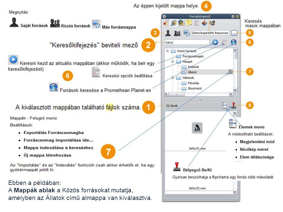 Ebben a példában: A Mappák ablak a Közös forrásokat mutatja, amelyben az Állatok című almappa van kiválasztva.