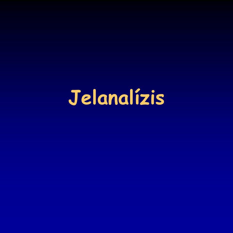 Jelanalízis