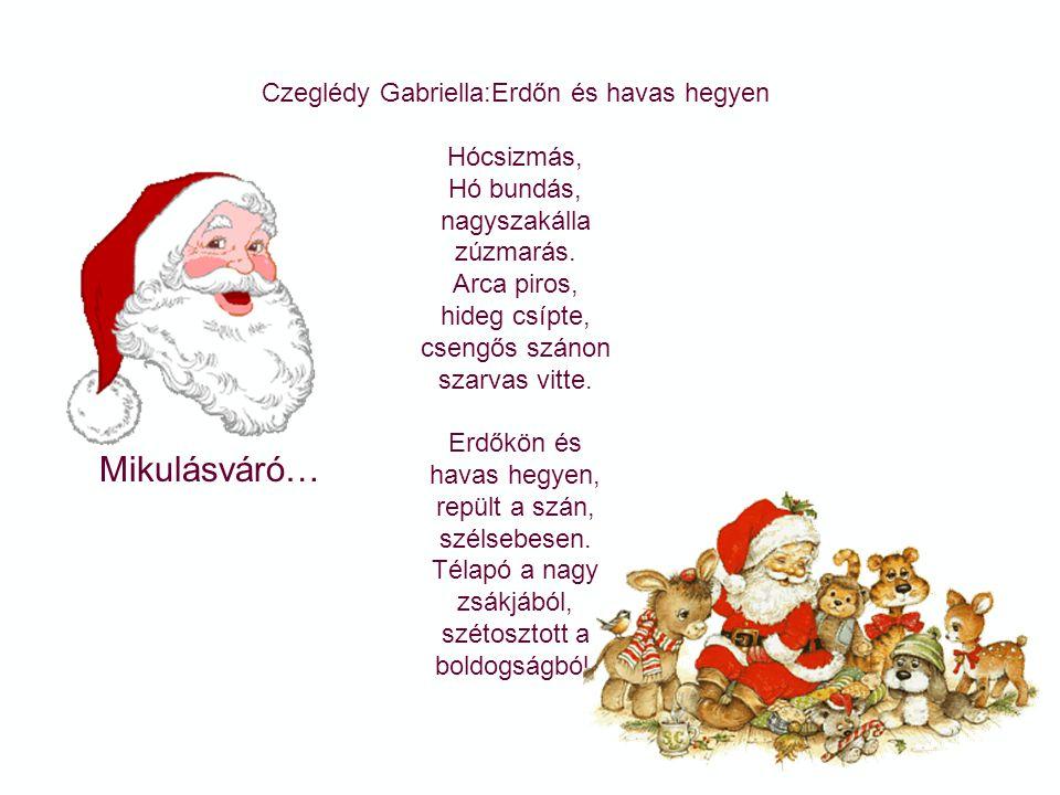 Czeglédy Gabriella:Erdőn és havas hegyen