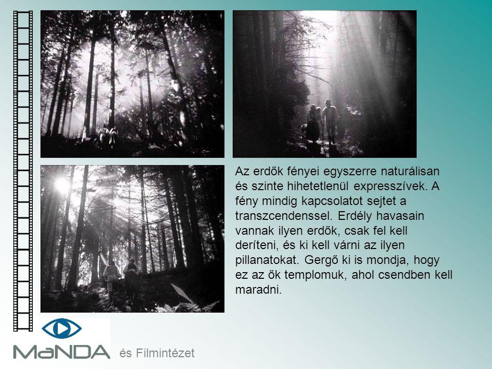 Az erdők fényei egyszerre naturálisan és szinte hihetetlenül expresszívek. A fény mindig kapcsolatot sejtet a transzcendenssel. Erdély havasain vannak ilyen erdők, csak fel kell deríteni, és ki kell várni az ilyen pillanatokat. Gergő ki is mondja, hogy ez az ők templomuk, ahol csendben kell maradni.