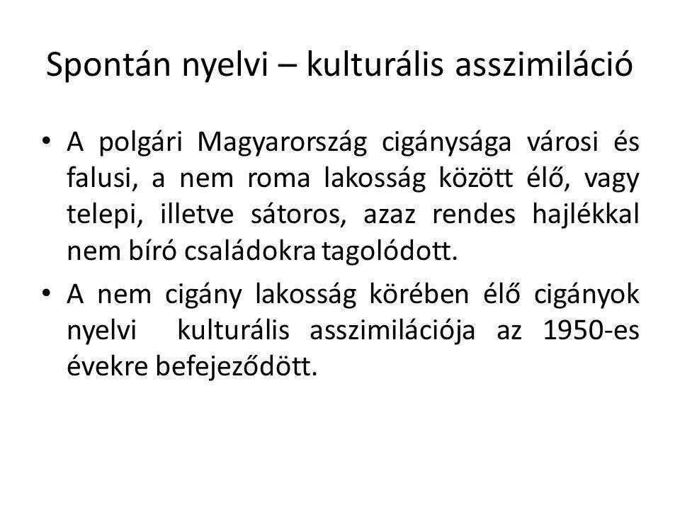 Spontán nyelvi – kulturális asszimiláció