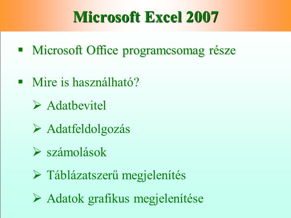 Microsoft Excel 2007 Microsoft Office programcsomag része