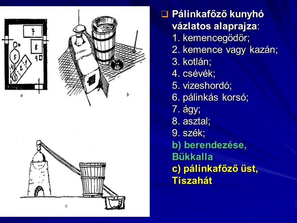 Pálinkafőző kunyhó vázlatos alaprajza: 1. kemencegödör; 2