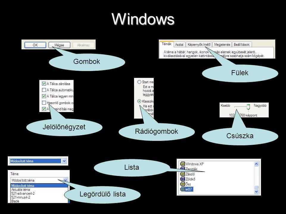 Windows Gombok Fülek Jelölőnégyzet Rádiógombok Csúszka Lista