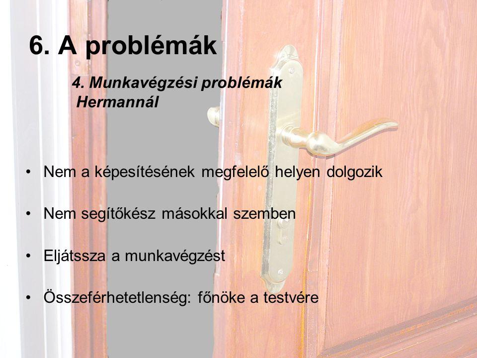 6. A problémák 4. Munkavégzési problémák Hermannál