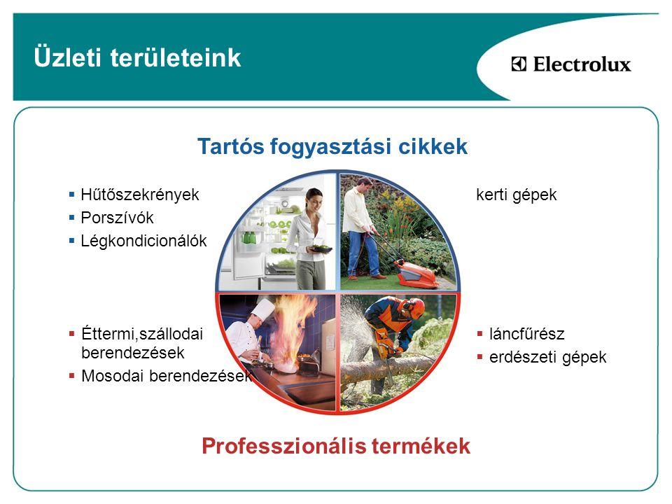 Tartós fogyasztási cikkek Professzionális termékek