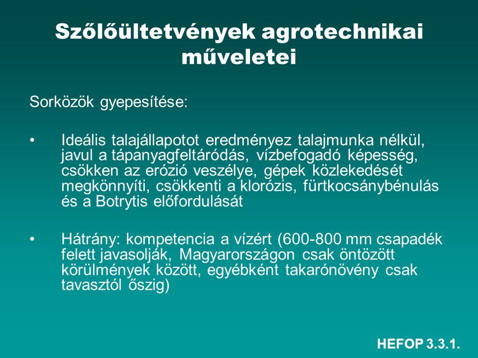 Szőlőültetvények agrotechnikai műveletei