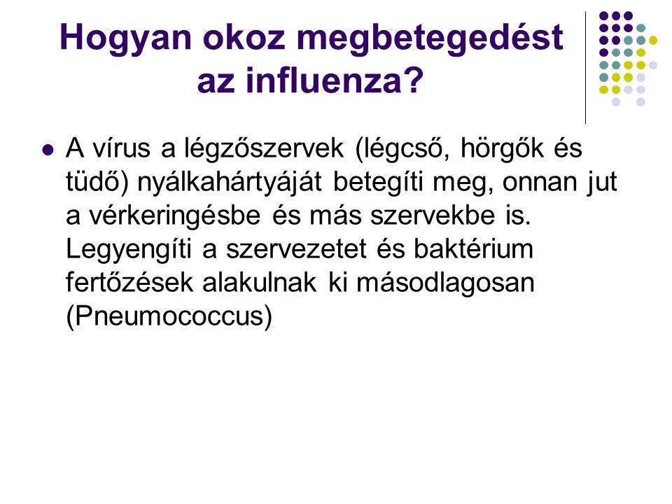 Hogyan okoz megbetegedést az influenza