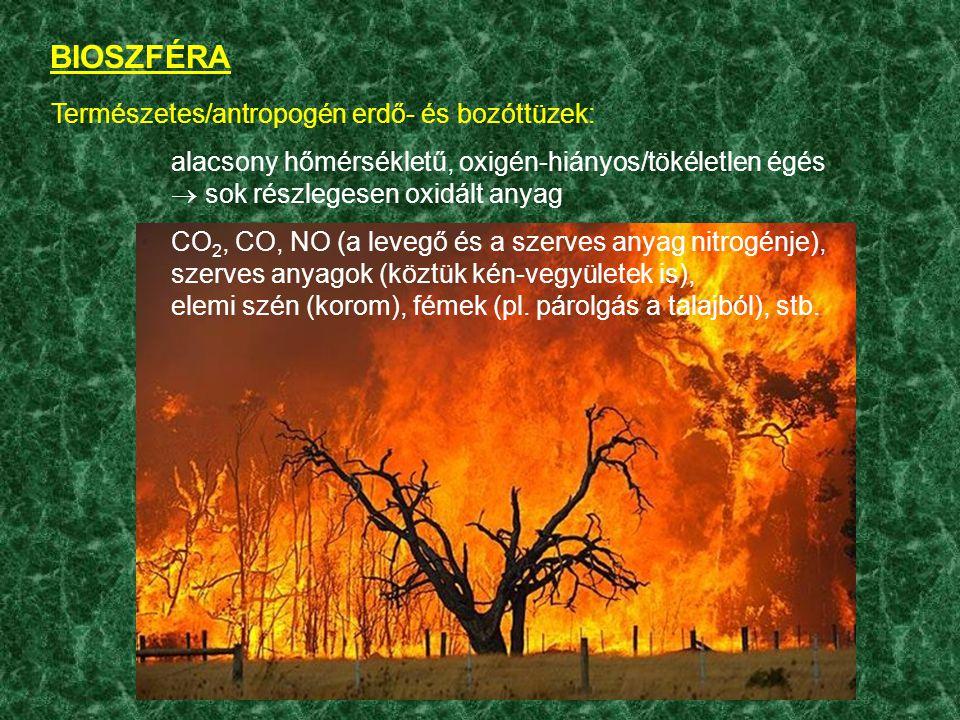 BIOSZFÉRA Természetes/antropogén erdő- és bozóttüzek: