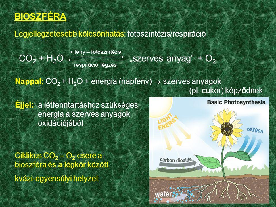 + fény -- fotoszintézis