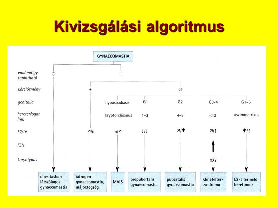 Kivizsgálási algoritmus