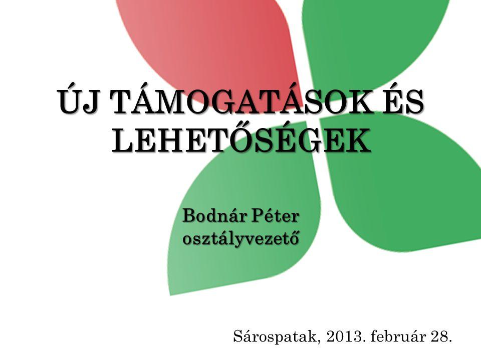 ÚJ TÁMOGATÁSOK ÉS LEHETŐSÉGEK Bodnár Péter osztályvezető