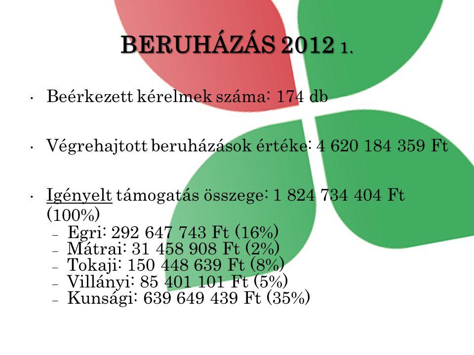 BERUHÁZÁS 2012 1. Beérkezett kérelmek száma: 174 db