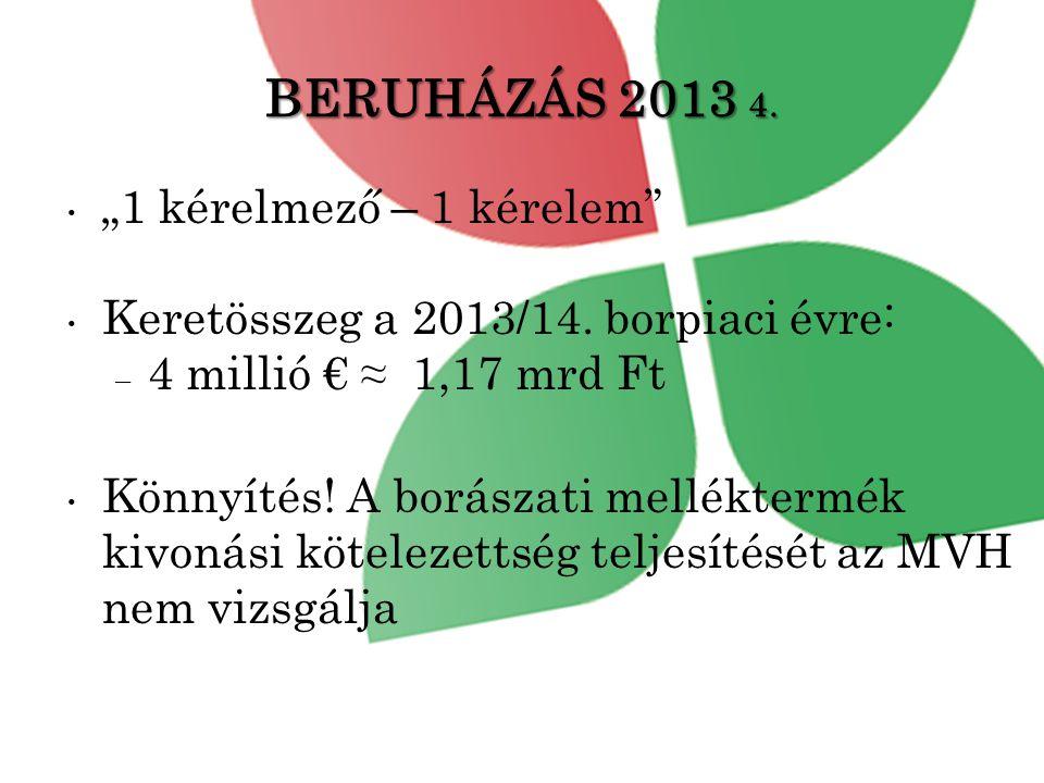"""BERUHÁZÁS 2013 4. """"1 kérelmező – 1 kérelem"""