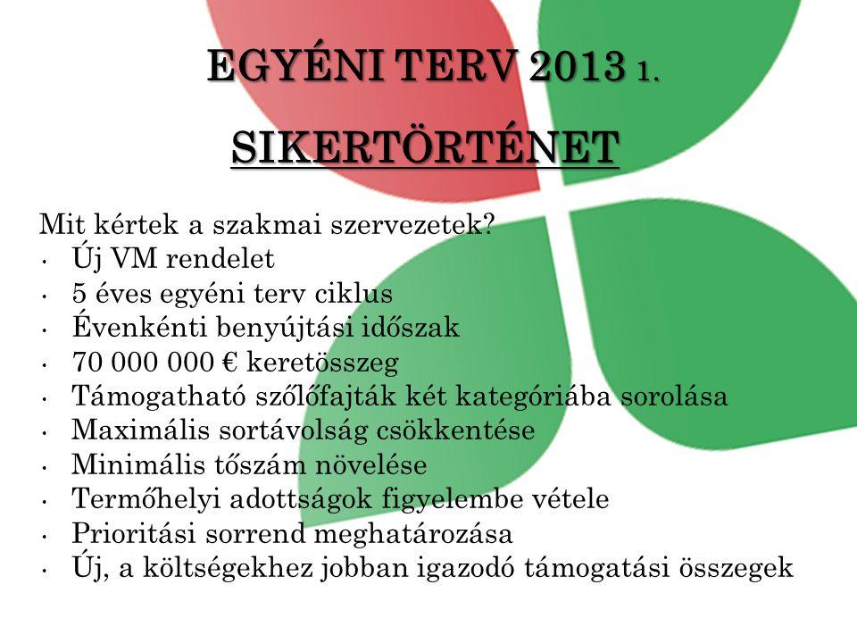 EGYÉNI TERV 2013 1. SIKERTÖRTÉNET