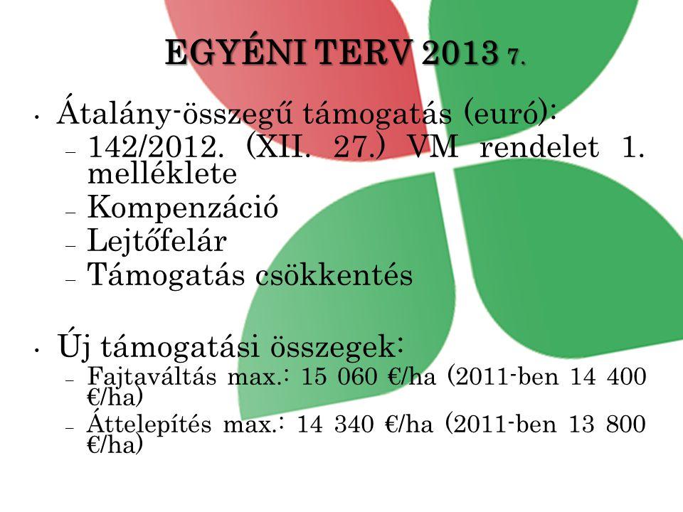 EGYÉNI TERV 2013 7. Átalány-összegű támogatás (euró):