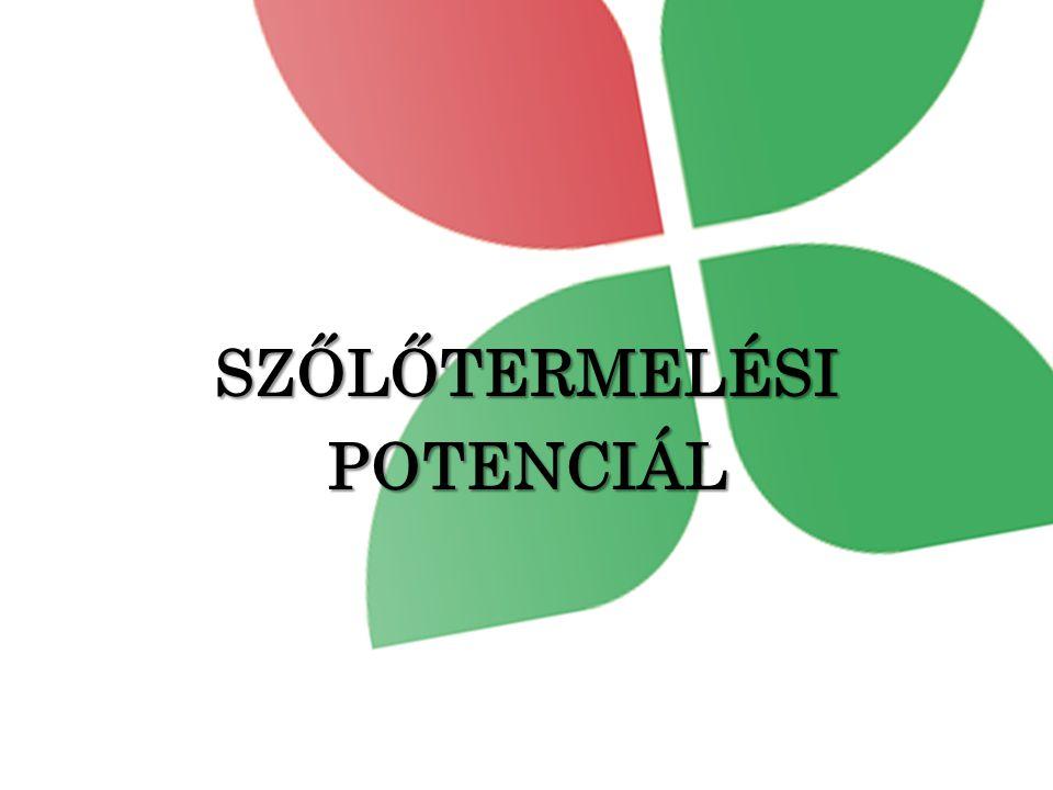 SZŐLŐTERMELÉSI POTENCIÁL