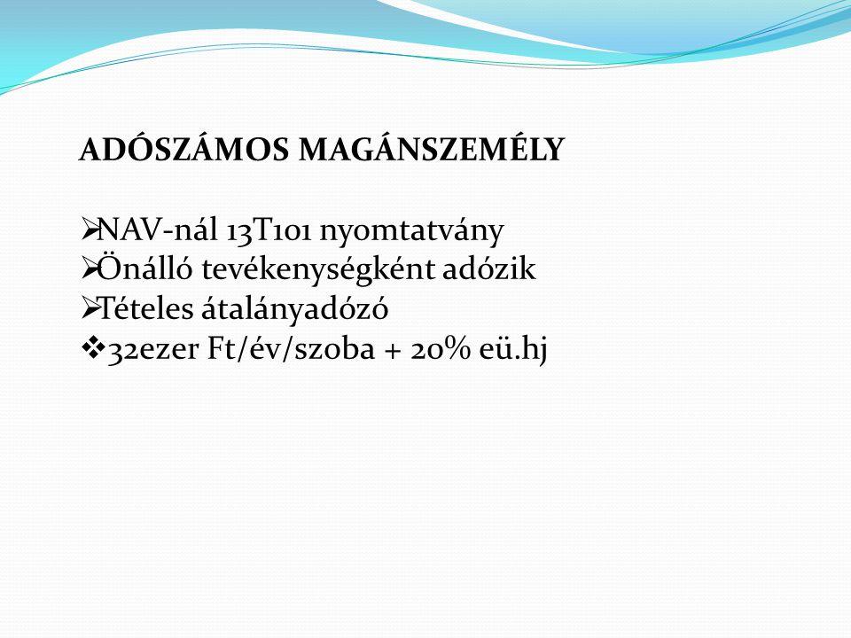 ADÓSZÁMOS MAGÁNSZEMÉLY NAV-nál 13T101 nyomtatvány