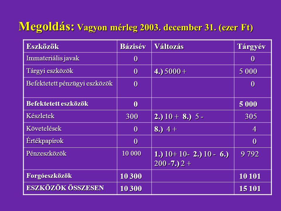 Megoldás: Vagyon mérleg 2003. december 31. (ezer Ft)