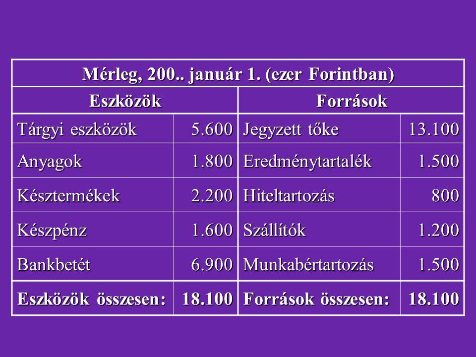 Mérleg, 200.. január 1. (ezer Forintban)
