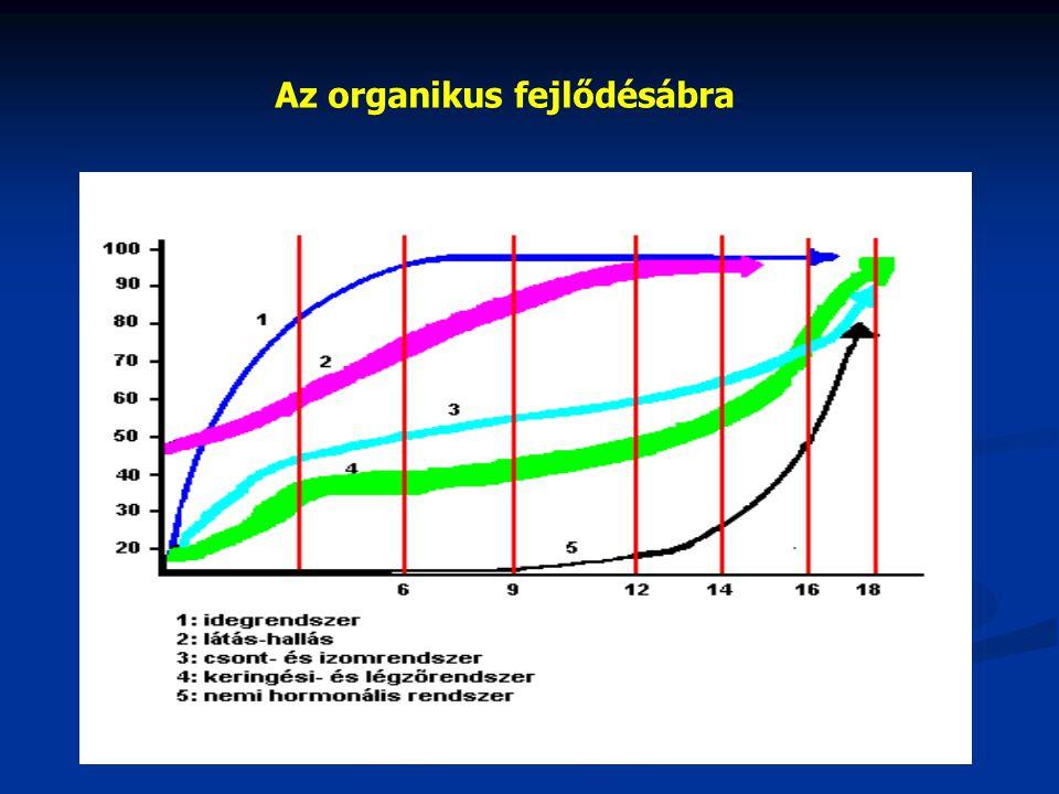 Az organikus fejlődésábra